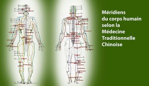 Meridiens-energetiques-Cabinet-massage-tuina-1024